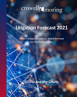 Litigation Forecast 2021 cover image